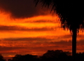 Barevný Pantanal, fotografování krajiny