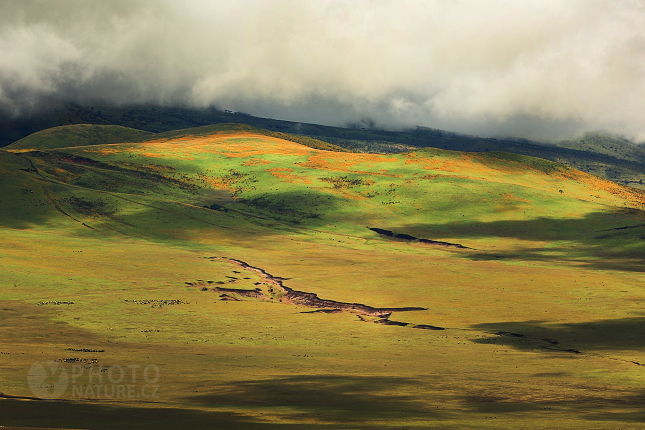 The stunning landscape of Ngorongoro Crater