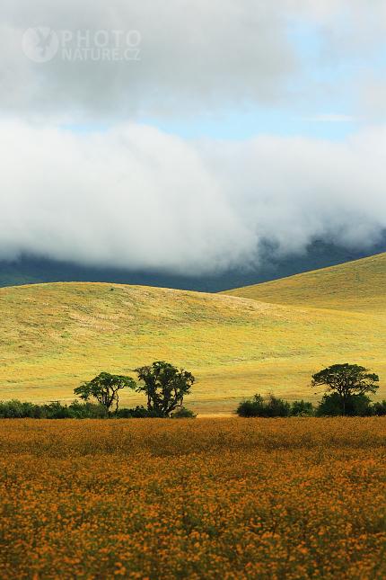 The stunning landscape of Ngorongoro Crater