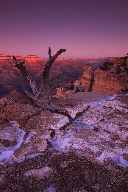 Grand_Canyon_sunset_08