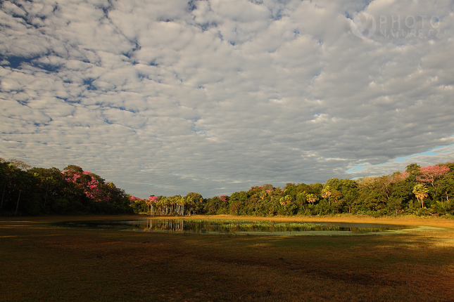krajina_Pantanal_03