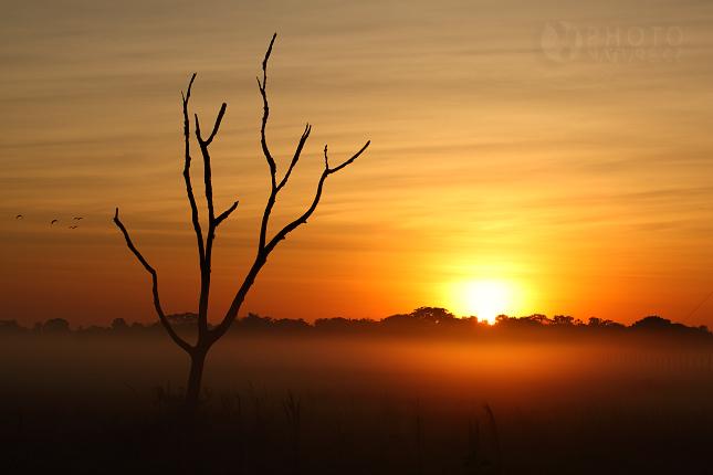 krajina_Pantanal_05