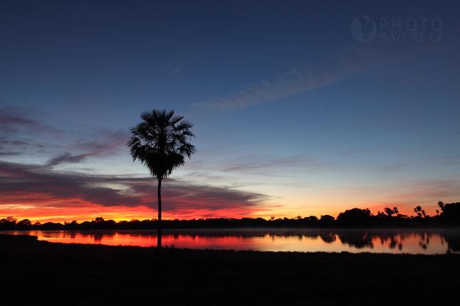 krajina_Pantanal_08