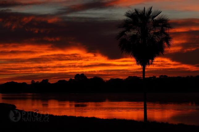 krajina_Pantanal_09