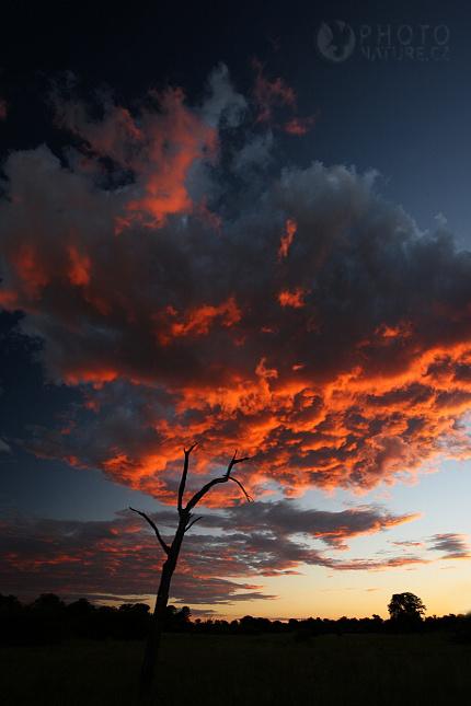 sunsetafrica